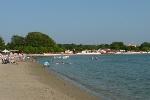 strand medulin